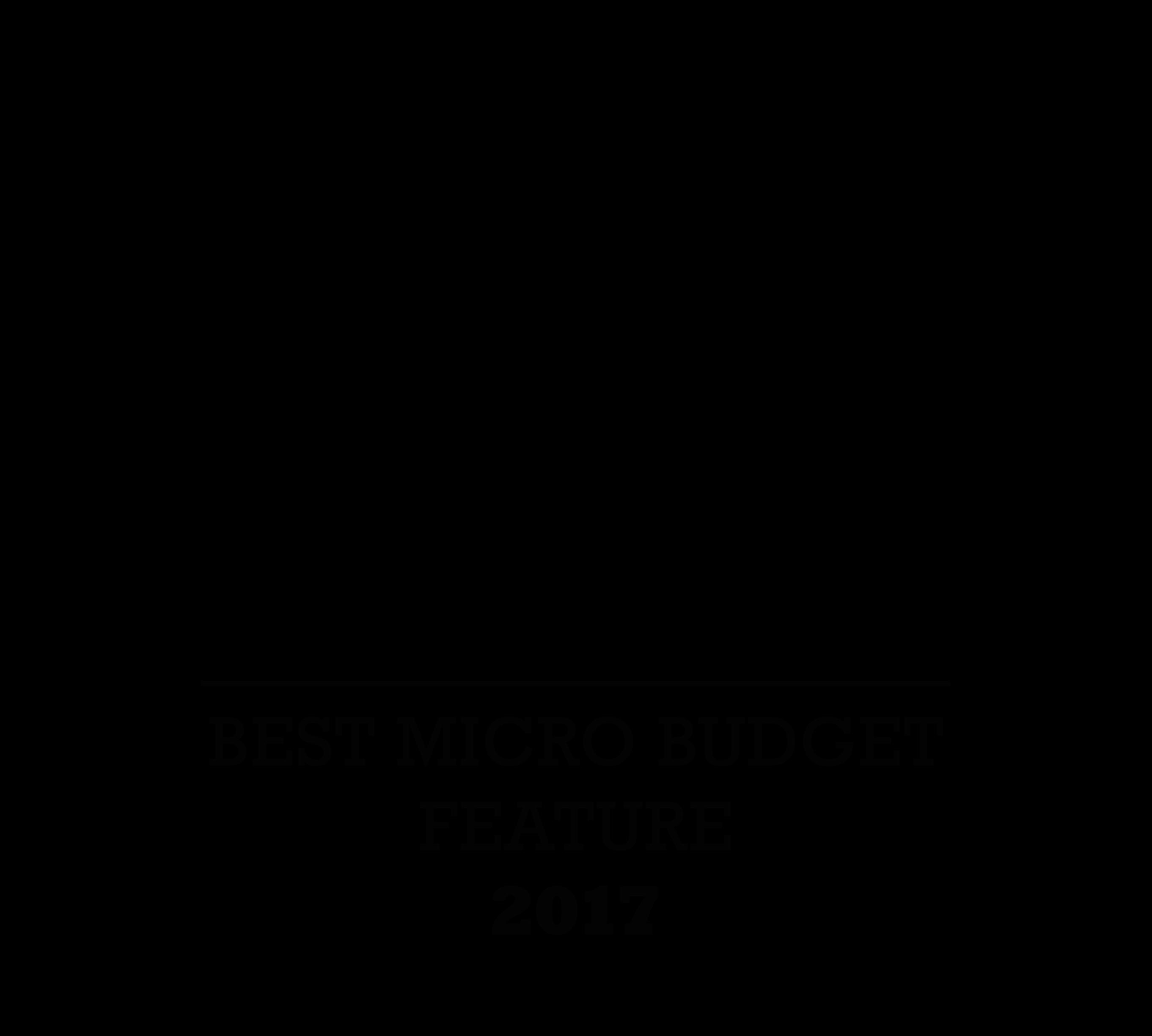 Paris Independant Film Festival 2017 Best micro budget